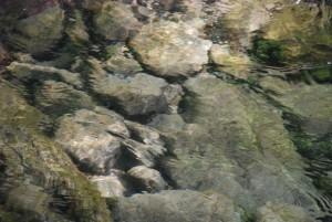 Przed chwilą była tu ryba / The Fish is gone (3) / Kamienie wwodzie / Stones in water (Rytro)