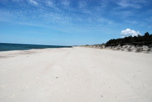 Plaża (Łazy)