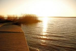 Widok w kolorze sepii (Jezioro Jamno)