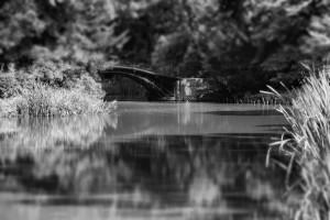 Mosty (między snem, ajawą)