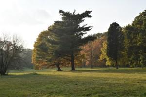 Jesień wŚwierklańcu