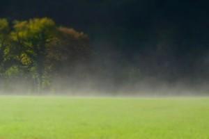 Mgły. Wdrodze doTamié