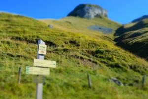 Drogowskaz /Signpost (La Fatte, G. Sabaudia, Francja - France)