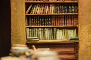 Biblioteka (Muzeum Miniatur...)