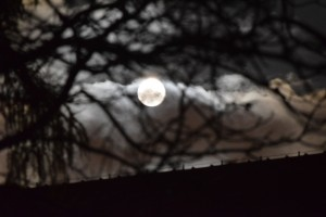 Księżyc 14 listopada. Zbliżenie
